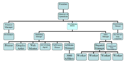 Organization Chart - San Diego Business Immigration Laywer, corporation lawyer,corporate attorney, business immigration, visa lawyer, investing in a company